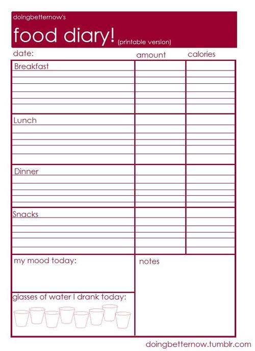 The Ambiguous Girl Food Calorie Journal Printable – 3 Day Food Diary Template