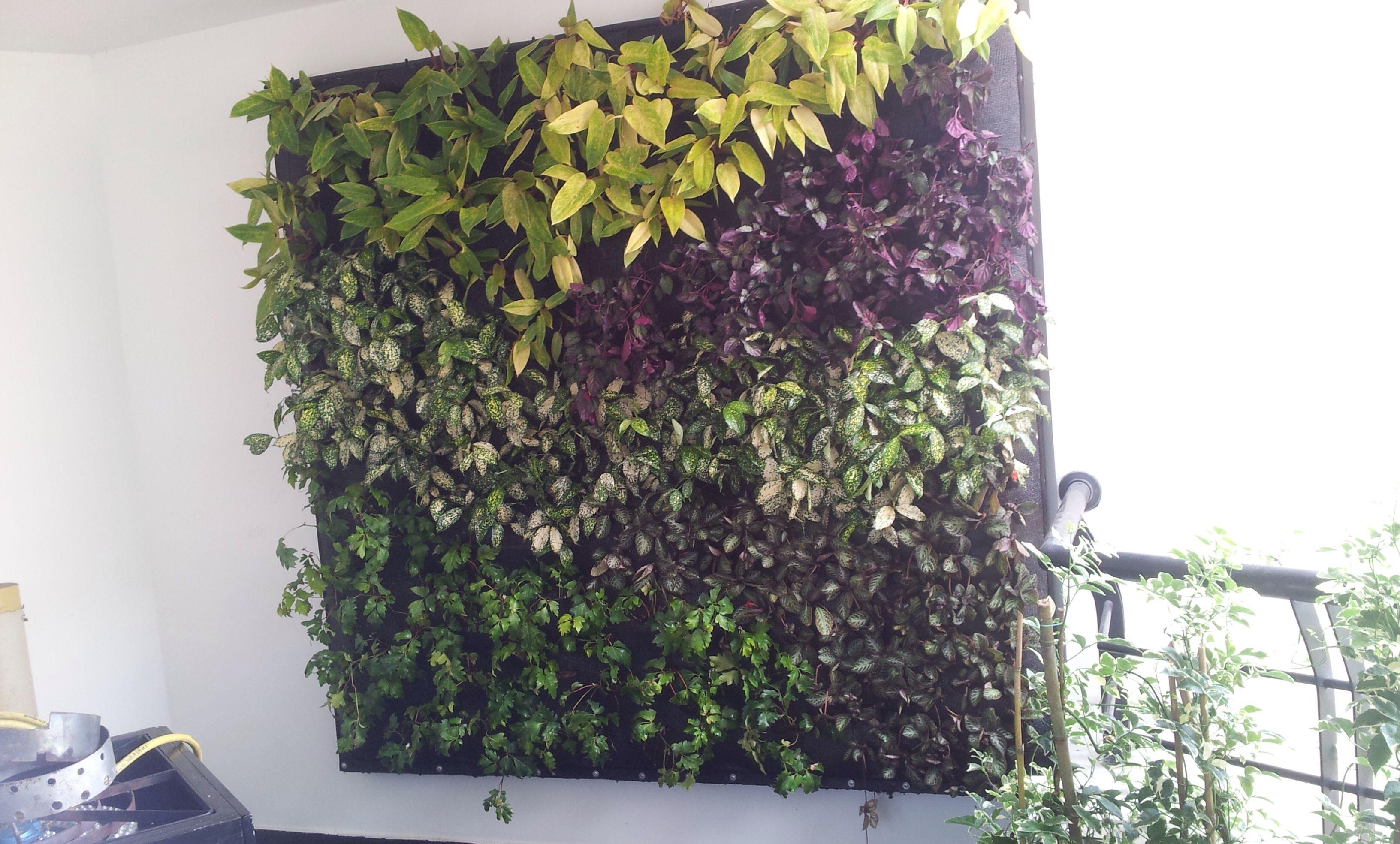 Balc n con jard n vertical precioso jardines for Balcon jardin vertical
