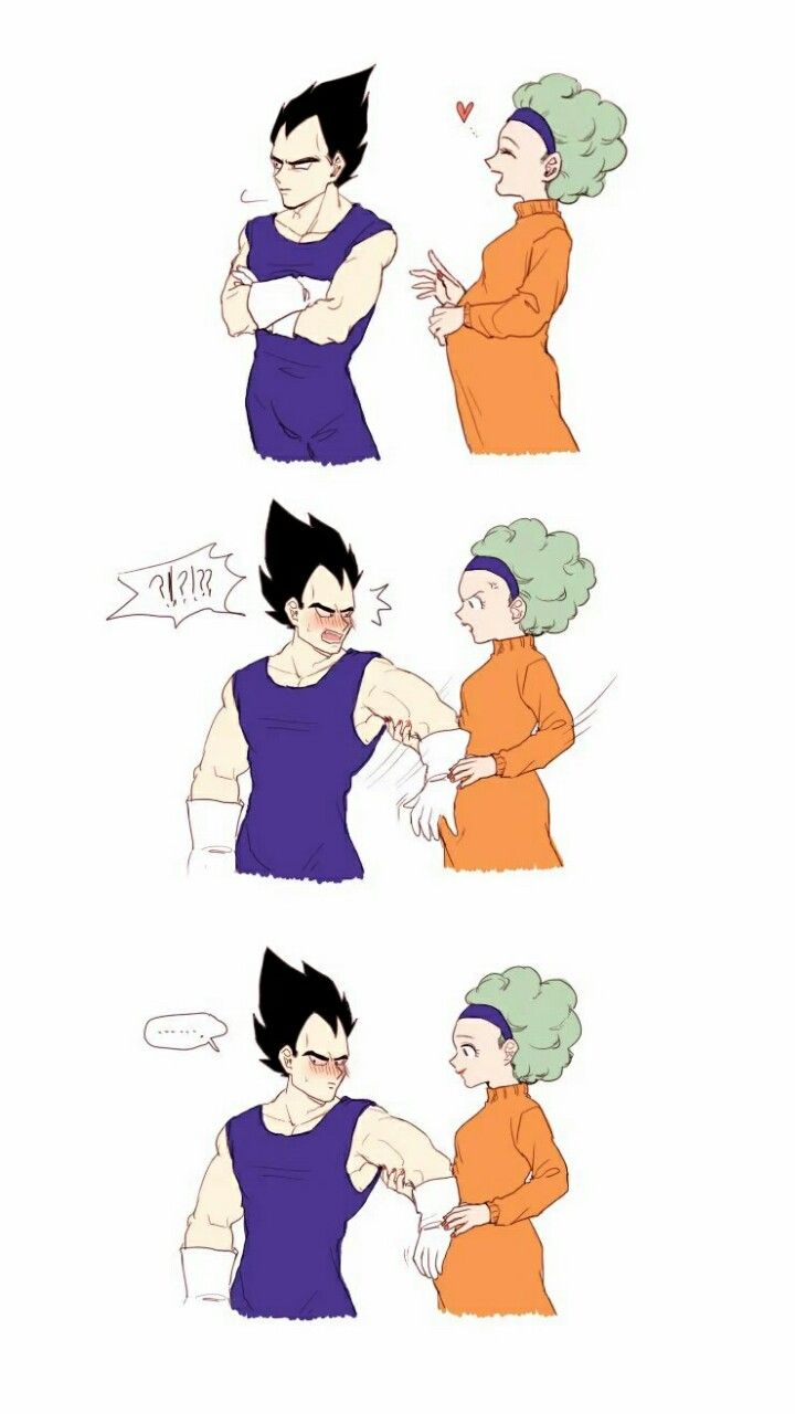Best Vegeta Bulma Fanart Photo Anime Dragon Ball Vegeta And Bulma Dragon Ball Z