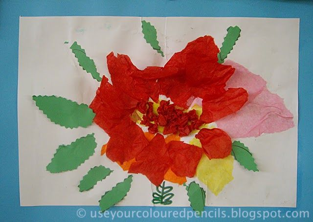 Use Your Coloured Pencils: Tissue Paper Flower Collages