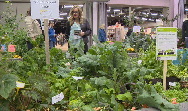 Saskatchewan cultivating new generation of gardeners