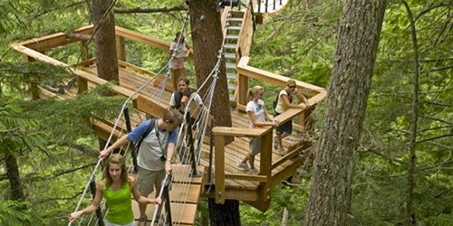 Whistler Tree Trek Tour - so want to do this. & Whistler Tree Trek Tour - so want to do this. | Travel | Pinterest ...