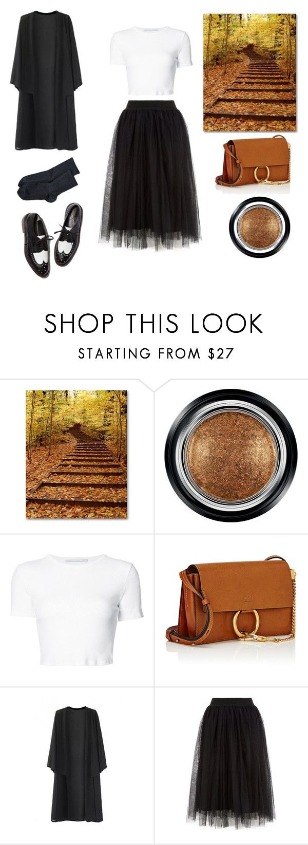 """""""Untitled #124"""" by dieulinh-iii ❤ liked on Polyvore featuring Giorgio Armani, Rosetta Getty, Chloé and Wolford"""