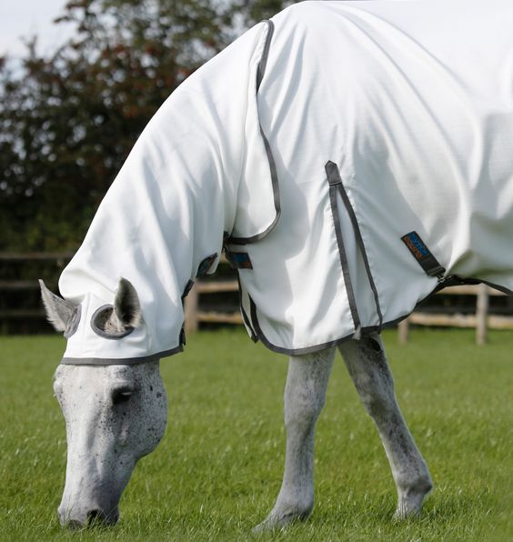 Sweet Itch Buster Fly Rug With Belly