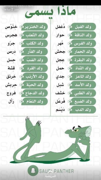 اسماء صفار الحيوانات Arabic Language Learning Arabic Learn Arabic Alphabet