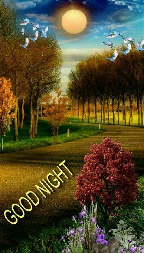 Pin By Mandy On Goodnight Beautiful Good Night Images Good Night Image Good Night Blessings