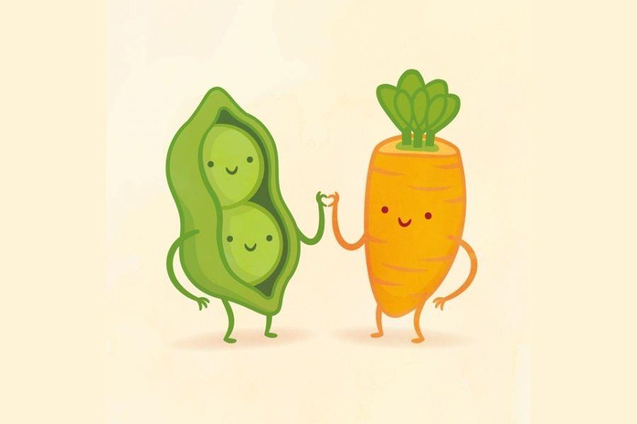 Dibujos De Alimentos Que Juntos Se Complementan