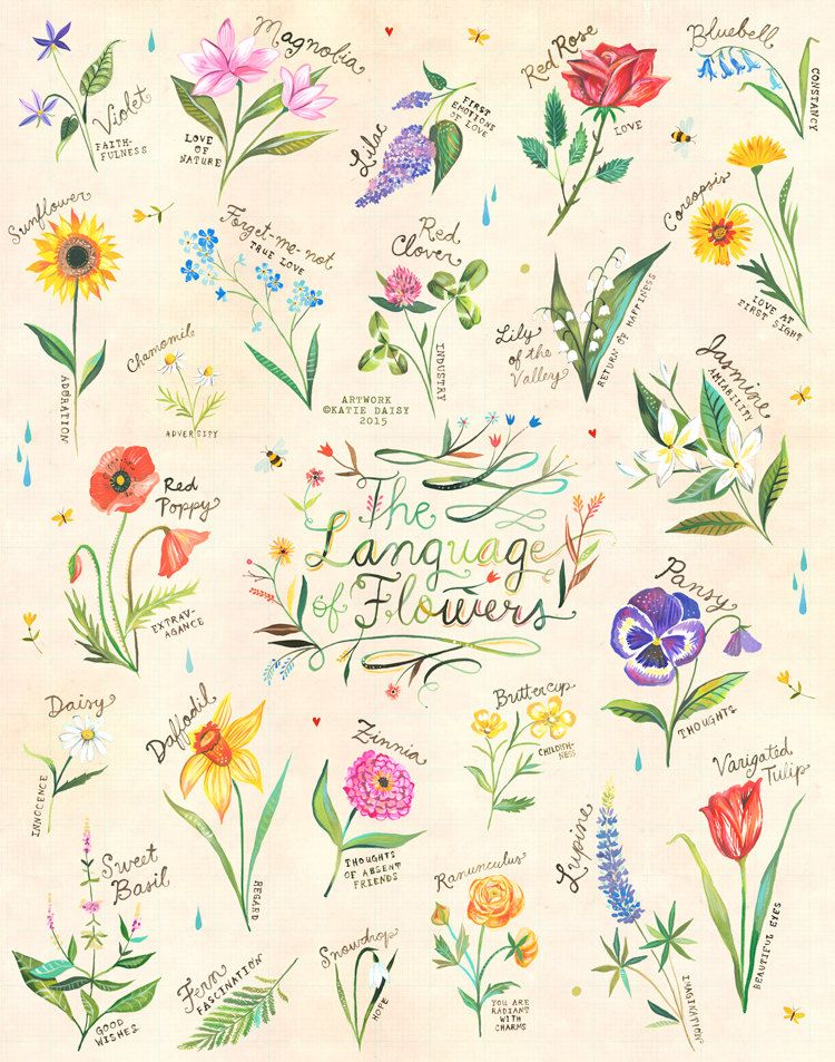 The Language of Flowers Art Print Watercolor Hand