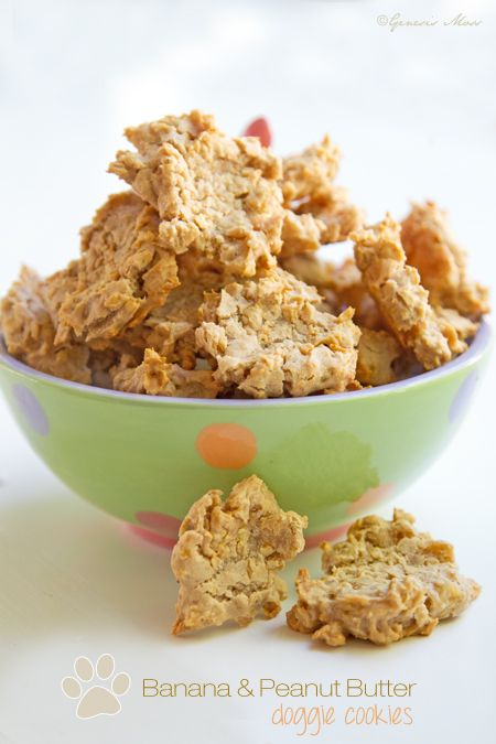 how to make crunchy peanut cookies for dogs