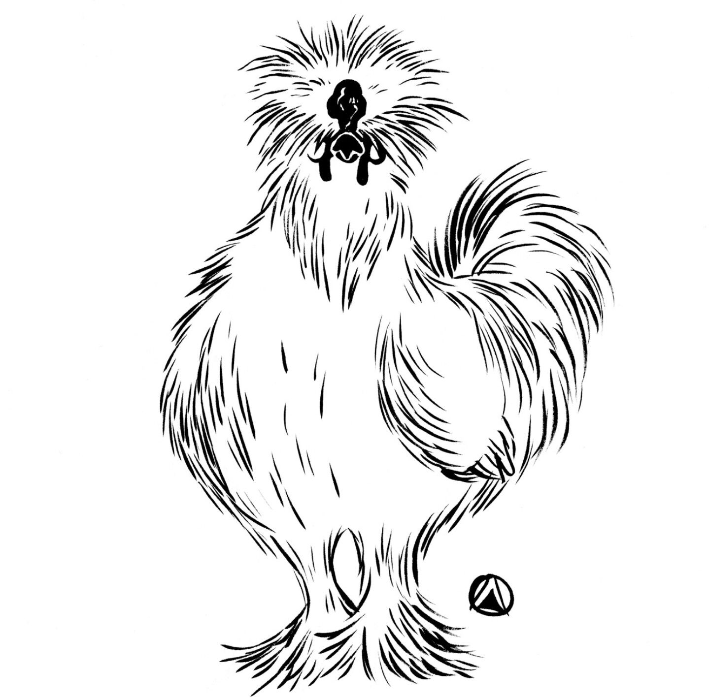 """Drawing by """"Too much Kale Salad."""" Chicken drawing"""