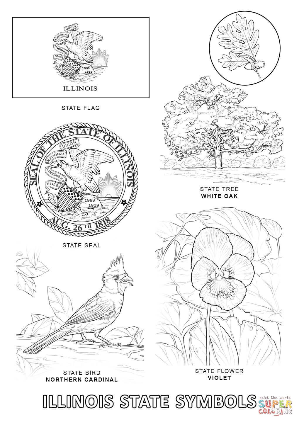 Click The Oklahoma State Tree Coloring Pages To View Printable Version Or Color It Online Compatible Wit Tree Coloring Page Flag Coloring Pages Coloring Pages
