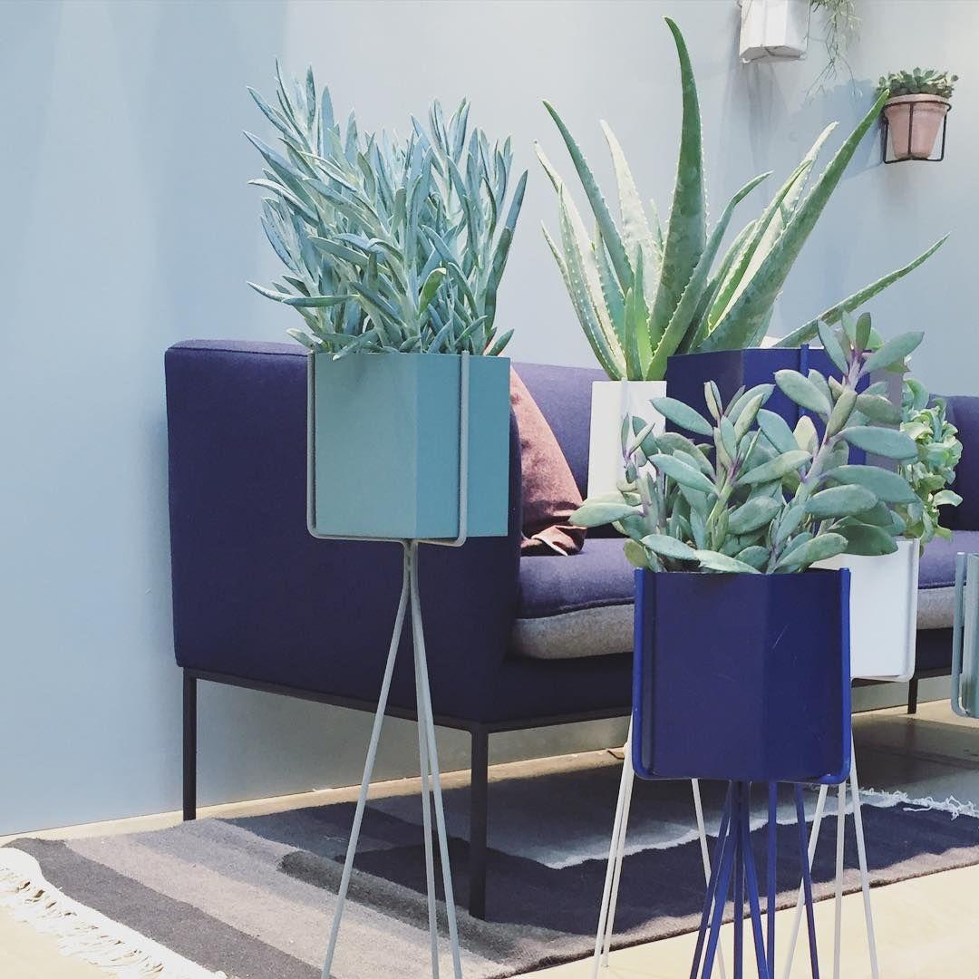 Green Living Berlin ferm living plant stands and hexagon pots http fermliving com