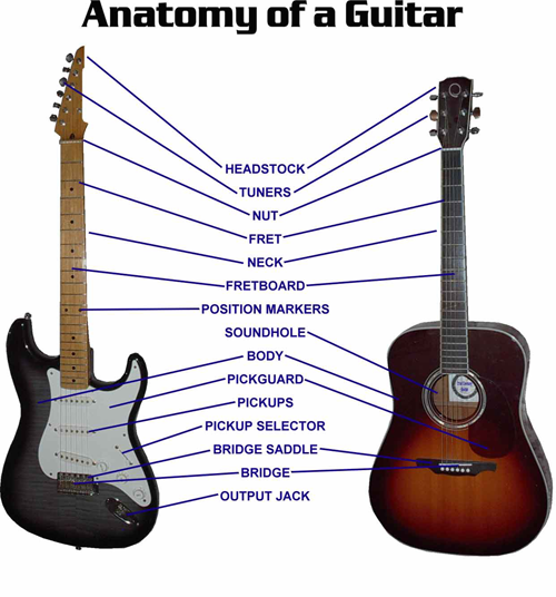 Image Labeling The Parts Of An Electric And Acoustic Guitar