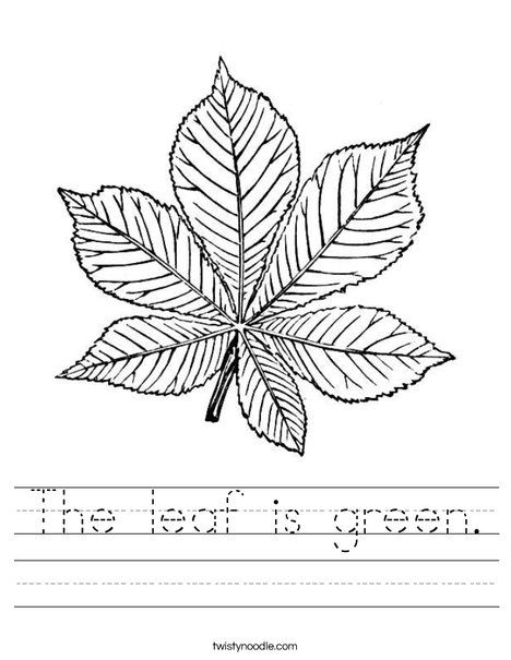 The leaf is green -Worksheet from TwistyNoodle.com | Lotus ...