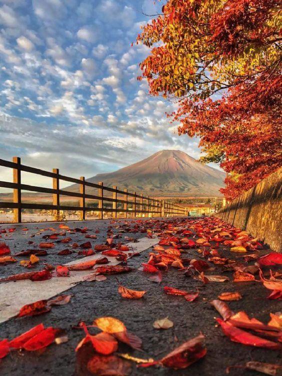 Autumn in Japan.