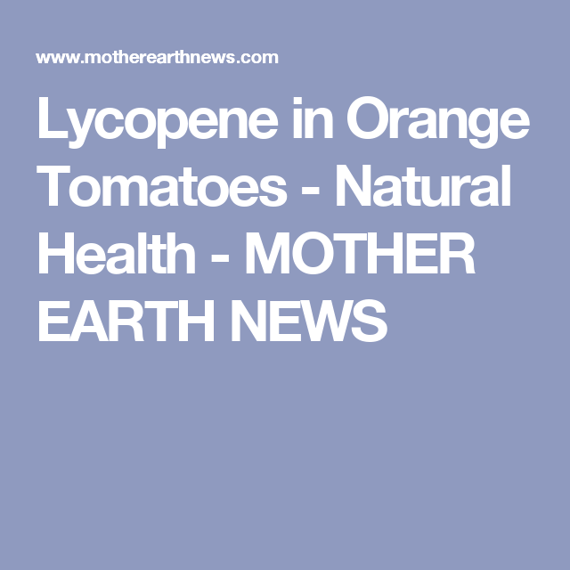 Lycopene in Orange Tomatoes - Natural Health - MOTHER EARTH NEWS