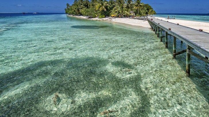 Maldivas Oceano Playa