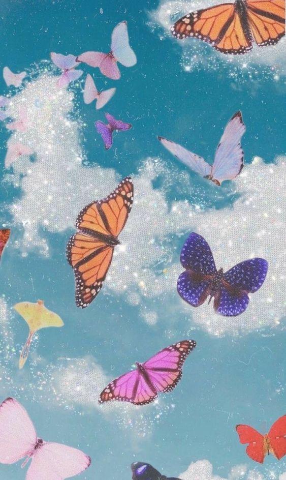 Vsco phone in 2020   Cute wallpaper backgrounds, Butterfly ...