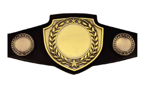 Printable Wrestling Belt Template Google Search Template Google Belt Templates