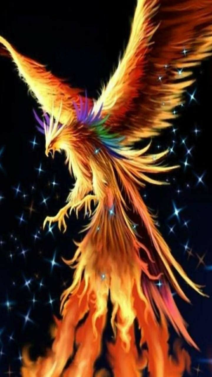 Pin By Maria Sammples On Dragon Wall Paper Phoenix Wallpaper Phoenix Artwork Dark Phoenix