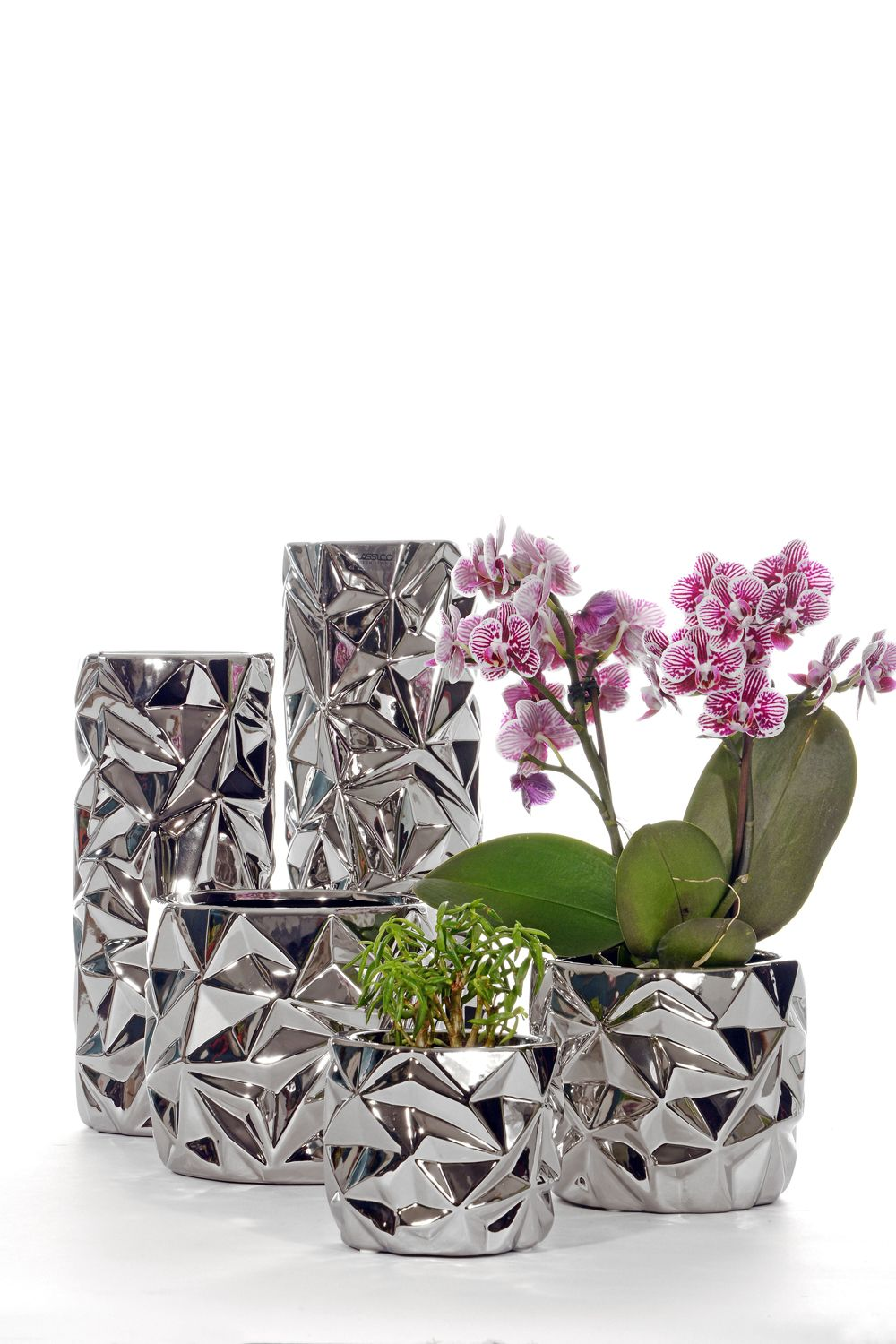 Display your favourite plants in style with this Classico