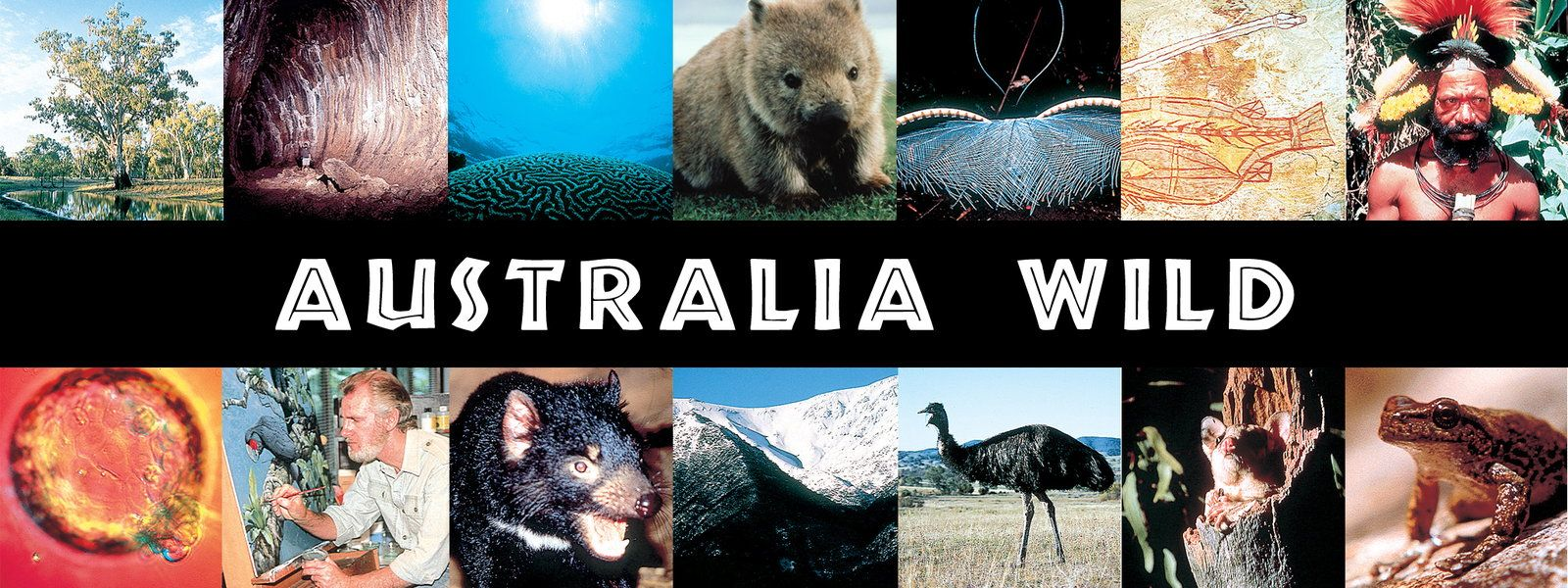Watch Australia Wild Online Free At Hulu
