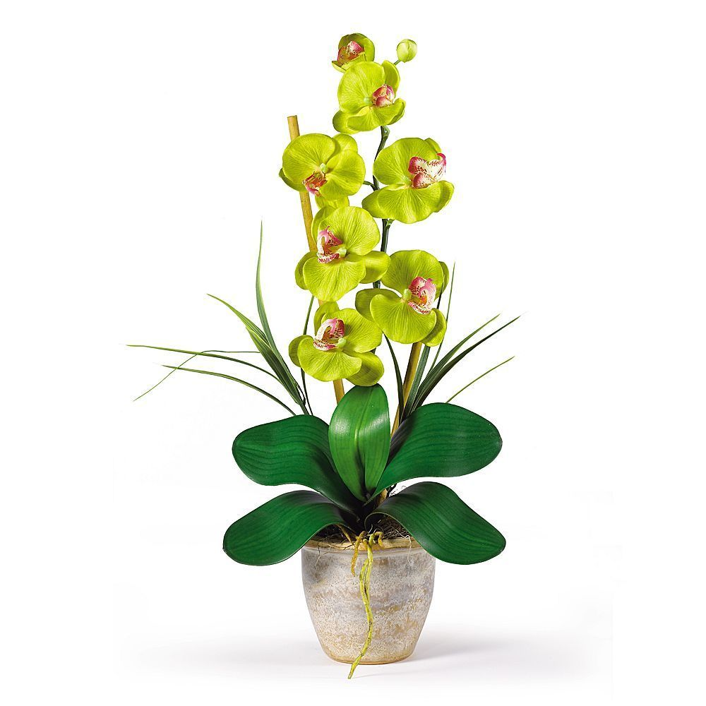 Nearly Natural Single Stem Silk Phalaenopsis Orchid Floral