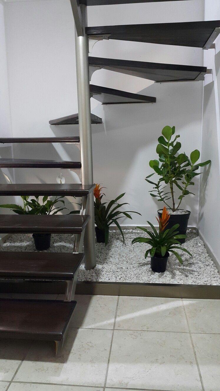 Jardin bajo escalera jardin de interiores for Jardin interior bajo escalera