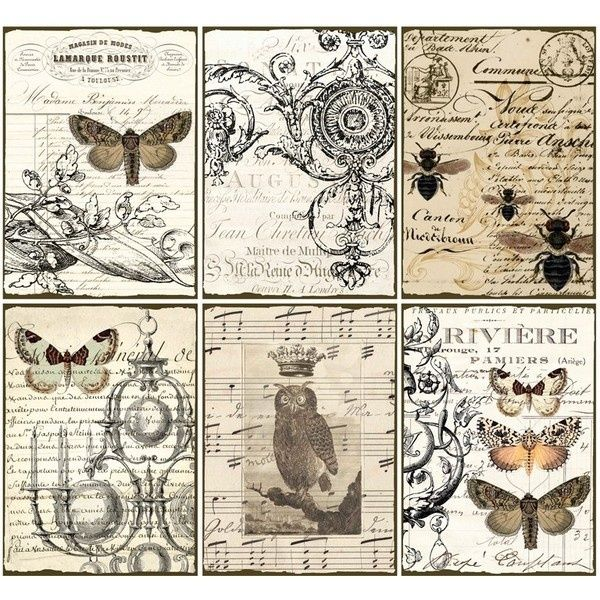 INSTANT DOWNLOAD diGital CoLLaGe Sheet ViNtaGe EpHeMera PaPer OwL BuTTerflieS PriNtaBle VintAge LaBelS FreNch SCriPts StaiNed, by Krista.S