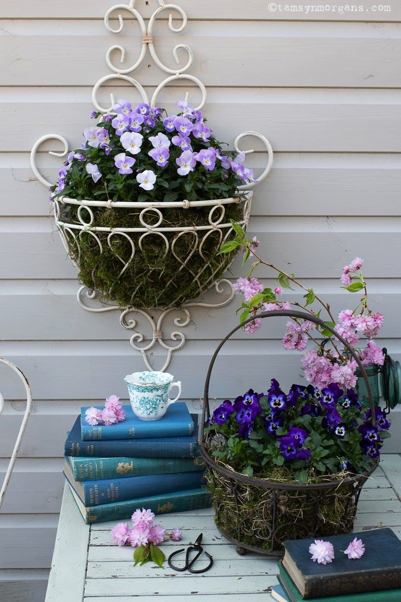 Tamsyn Morgans Beautiful Botanical Makeover Ideas With Homesense Vintage Garden Decor Ivy Plants Small Space Gardening
