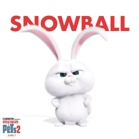 Video Cue Captain Snowball S Theme Music The Pets Return This Summer In The New Movie Thesecretlifeofpets2 Coming To Theaters Ju Hewan Lucu Binatang Disney Lucu