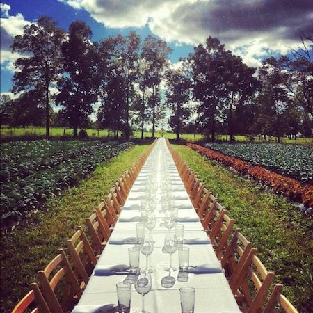 Outstanding In The Field Farm To Table Dinner Tour