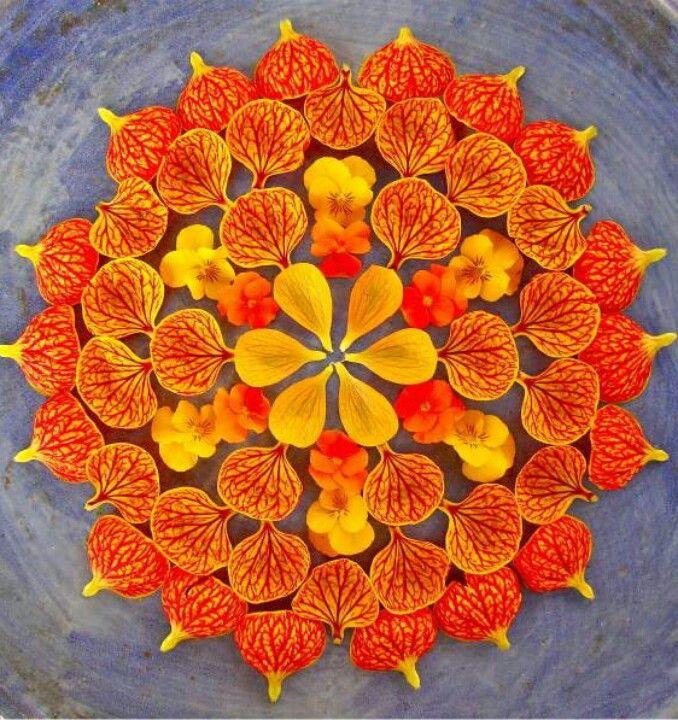 Beautiful Orange Petal Mandala. (With images) Flower