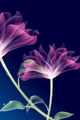 Pink Black Thursday Mystery Wallpaper Free Themes Samsung Oppo Vivo Flower Wallpaper Flowers Photography Flower Art