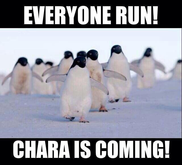 Everyone Run! Chara Is Coming!