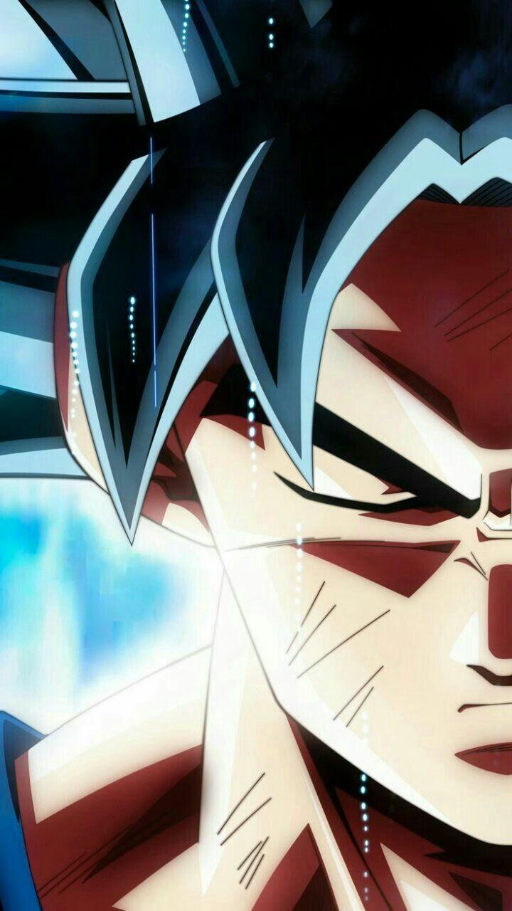 Pin By Alexandro Johandy Fernandez Ar On Ultra Instinct Dragon Ball Goku Dragon Ball Super Goku Dragon Ball Super