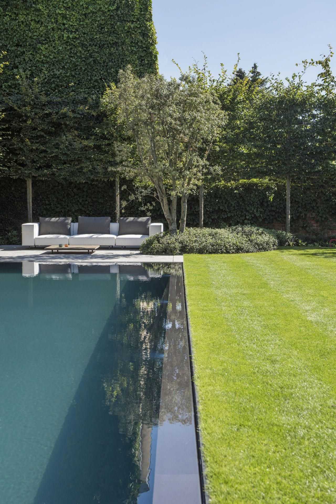 Onze Tuinen Stijn Phlypo Tuindesign Pool Landscape Design Pool Landscaping Swimming Pools Backyard