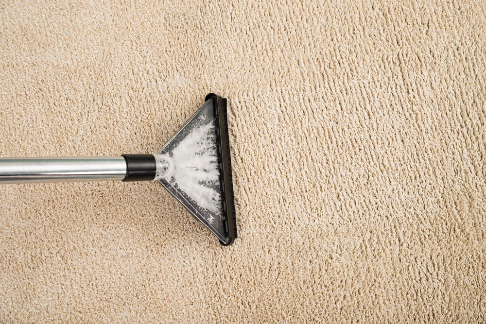 7 Tips For Drying Wet Carpet And Preventing Mold Growth