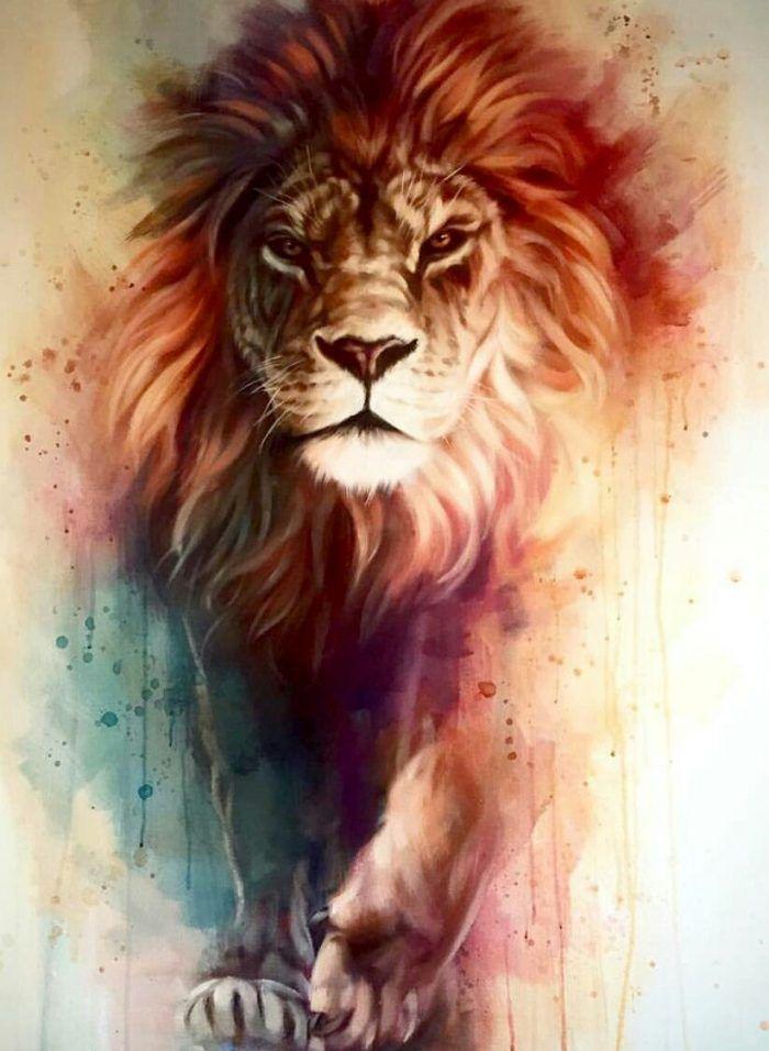 Lion Iphone Wallpaper Hd Lion Painting Lion Pictures Lion
