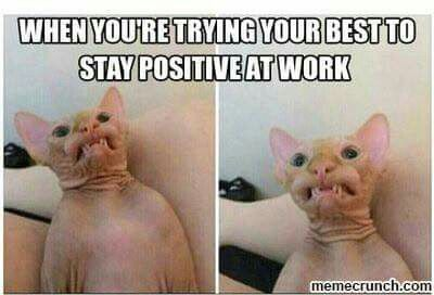 Pin By Amanda Davis On Quotes And Other Funnies Work Humor Nurse Humor Work Memes