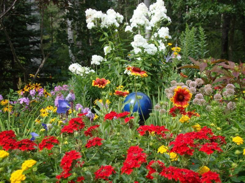 flower garden plans zone 5 - Google Search | Flower garden ...