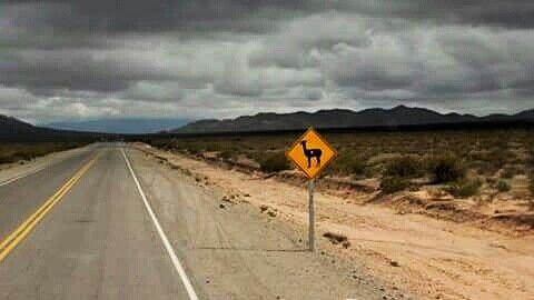 Recta del Tin Tin. #salta #argentina #cachi