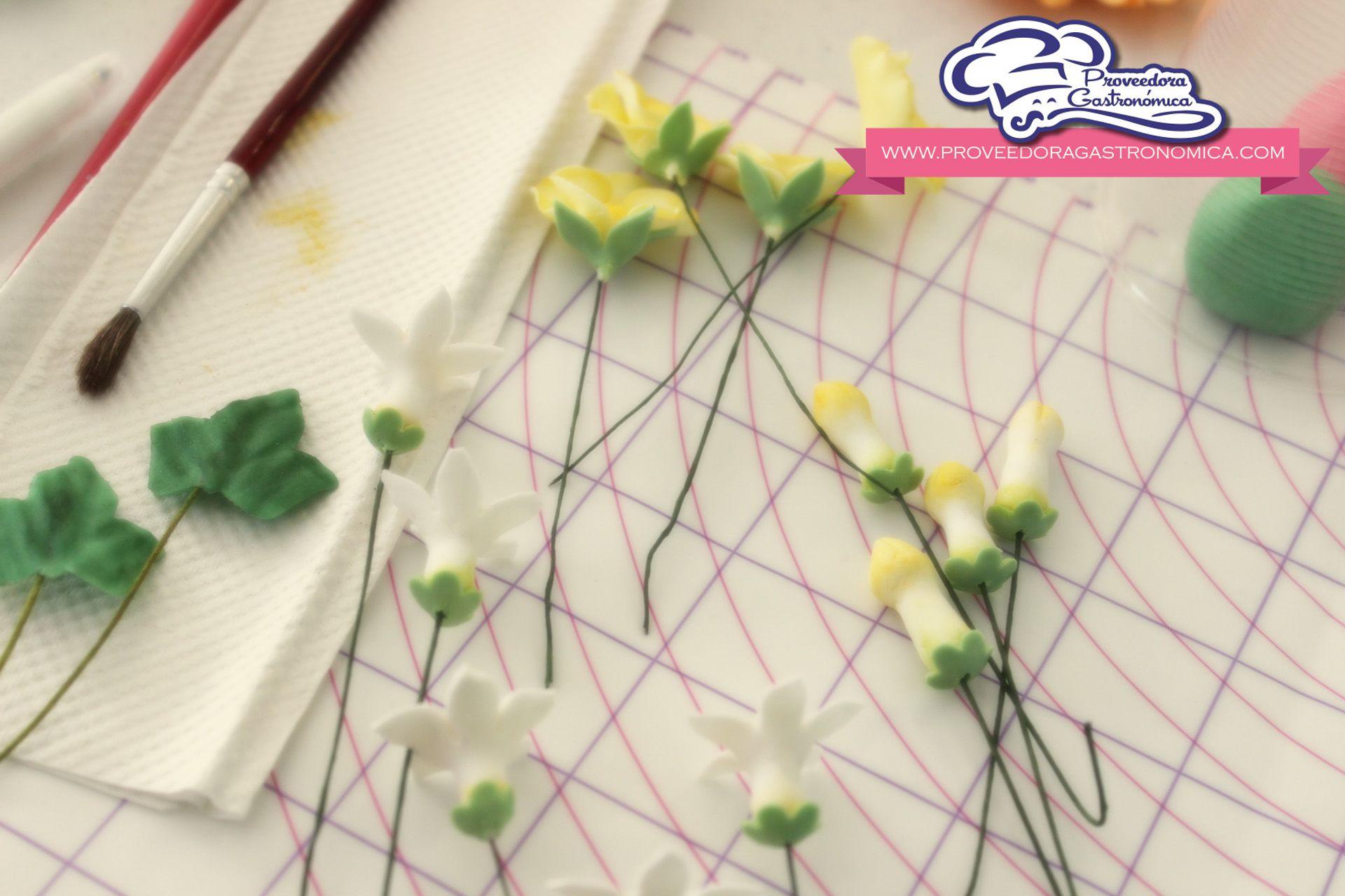 flores avanzadas