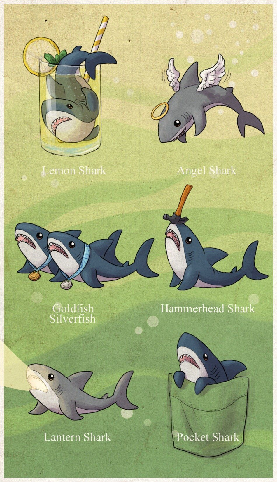ff0c1d2f7 Pin by Sarah on Animals in 2019 | Cute shark, Funny, Cute Animals