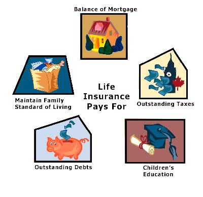 Do You Really Need Life Insurance Affordable Life Insurance