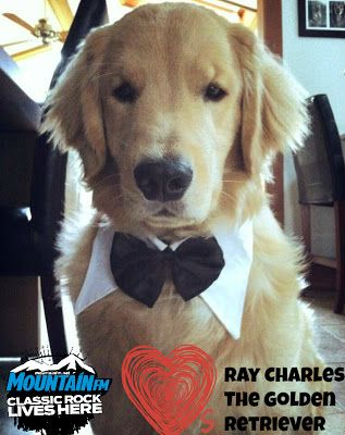My Facebook Guilty Pleasure The Adorable Ray Charles The Golden