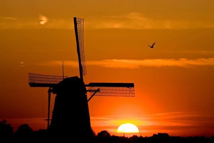 Molen - wind Mill