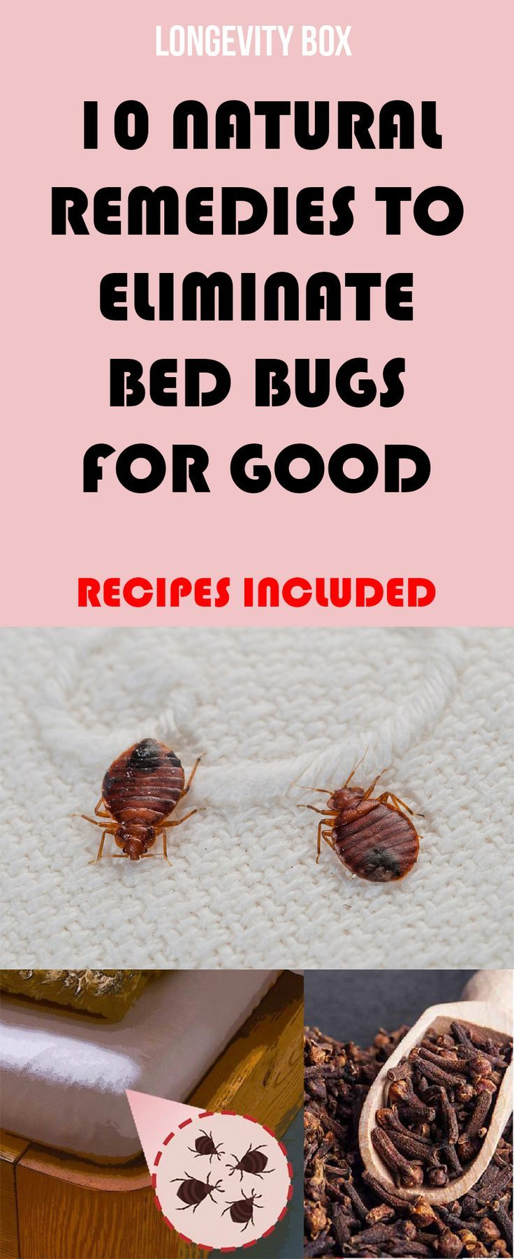 10 Natural Remedies to Eliminate Bed Bugs for Good