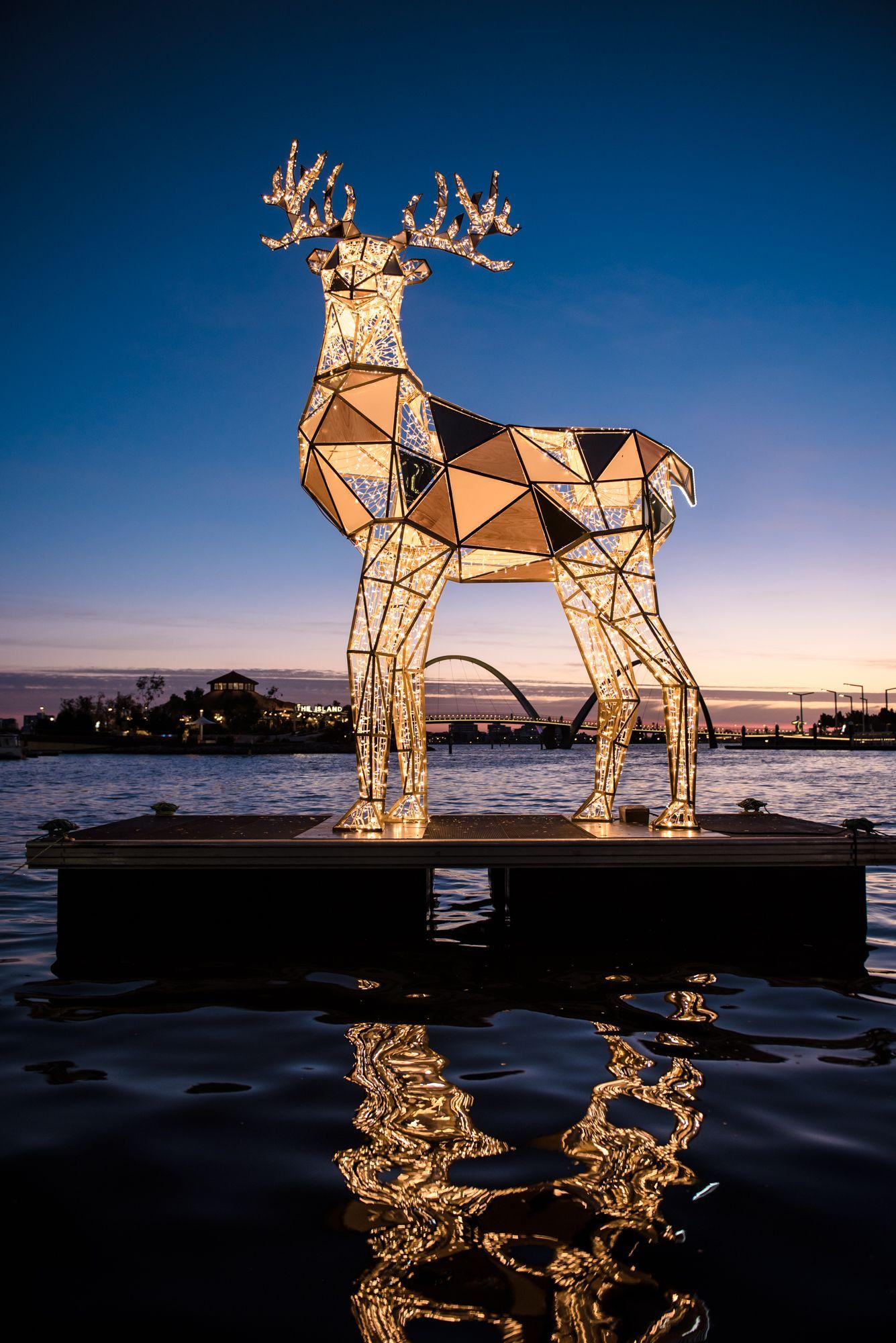 Pin By Shimona On Social Group Amanda Miller Light Trails Christmas Lights