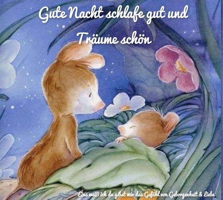 Bilder whatsapp süße gute nacht für Gute